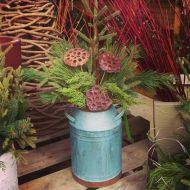 Spruce pot