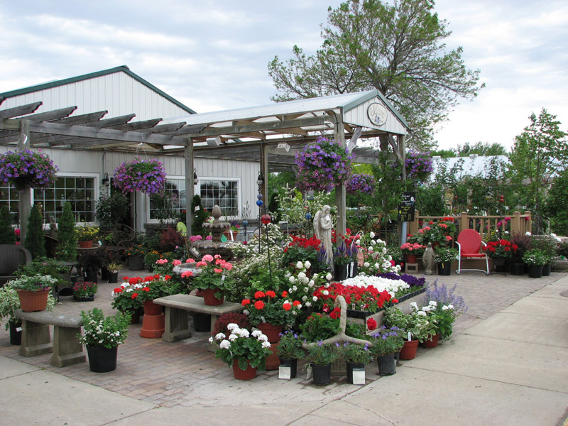 Greenwood Nursery in Tracy store front