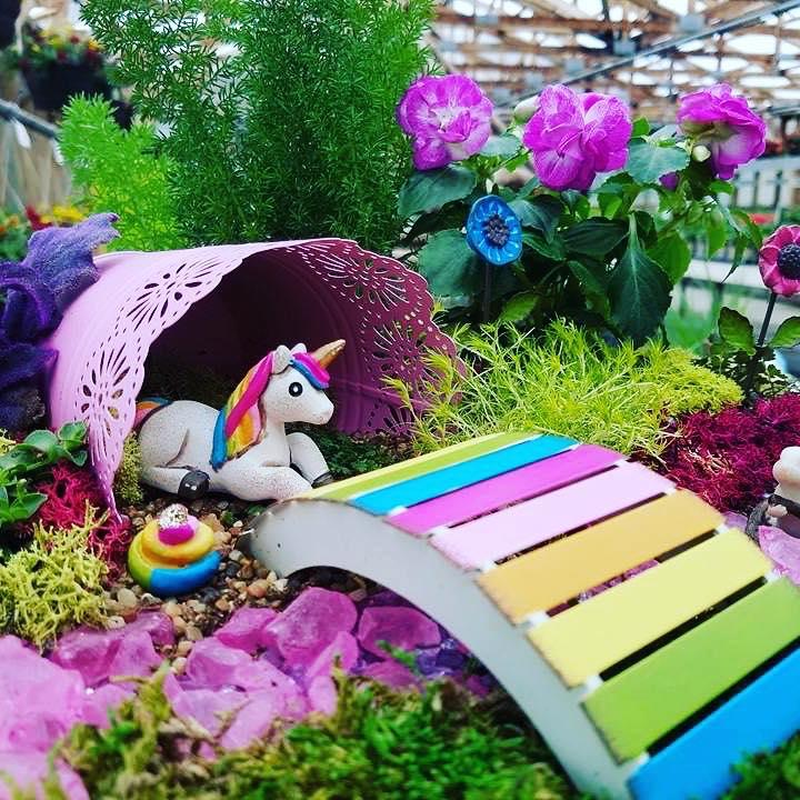 Miniature Garden Marshall Greenwood Nursery
